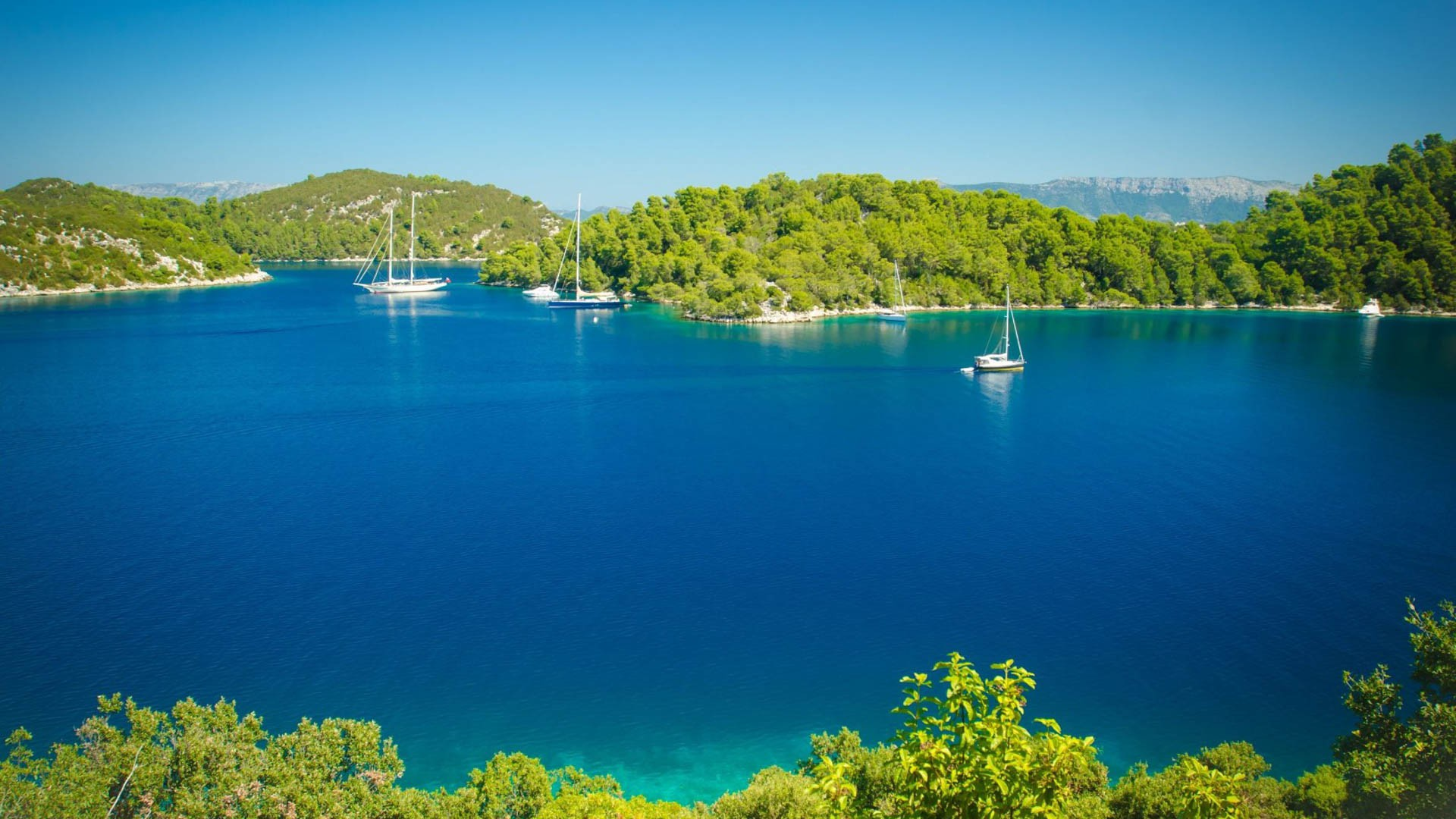 National Park Mljet - Adriatic Sea | Croatia Cruise Croatia Cruise